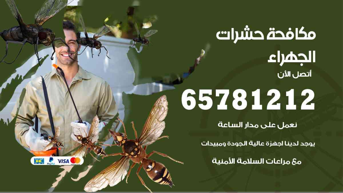 شركات مكافحة حشرات الجهراء