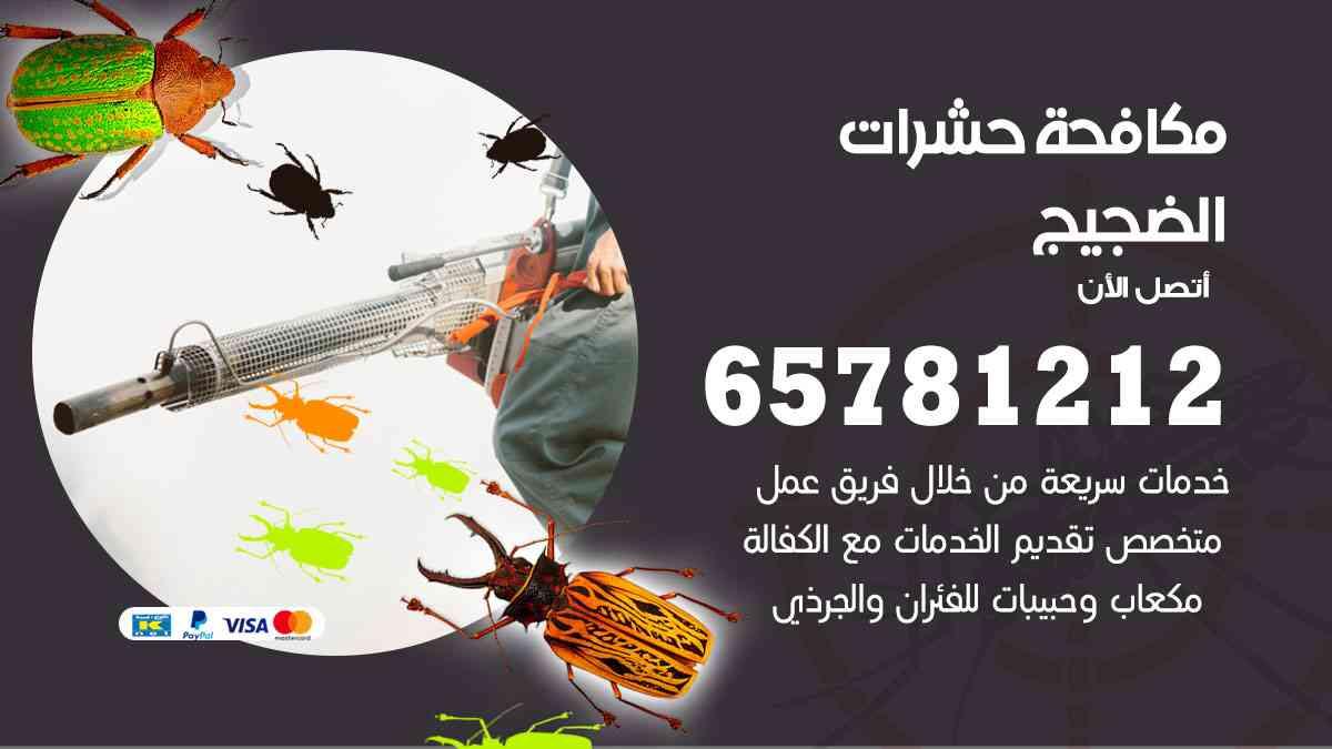 شركات مكافحة حشرات الضجيج