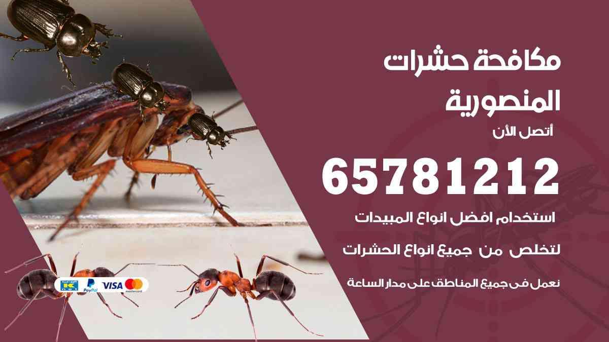شركات مكافحة حشرات المنصورية