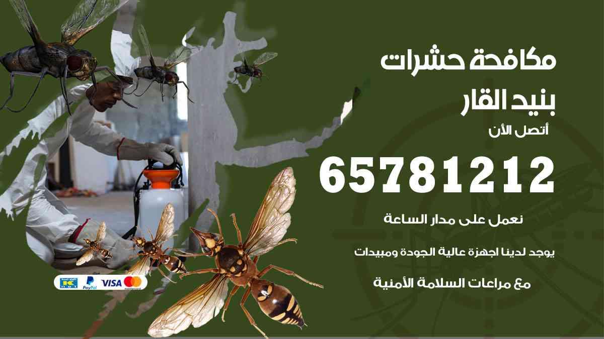 شركات مكافحة حشرات بنيد القار