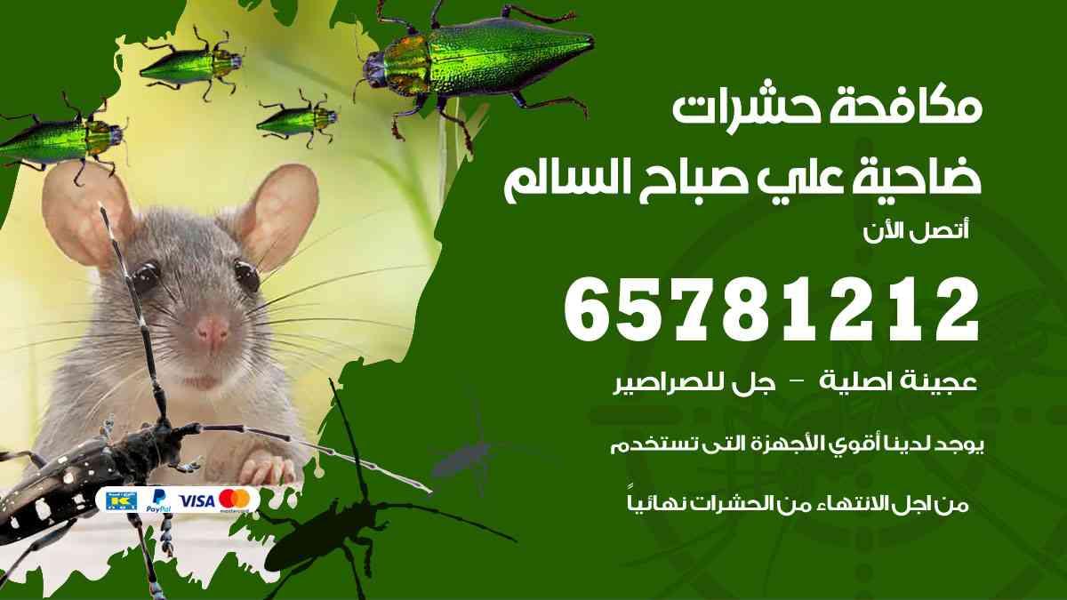 شركات مكافحة حشرات ضاحية علي صباح السالم