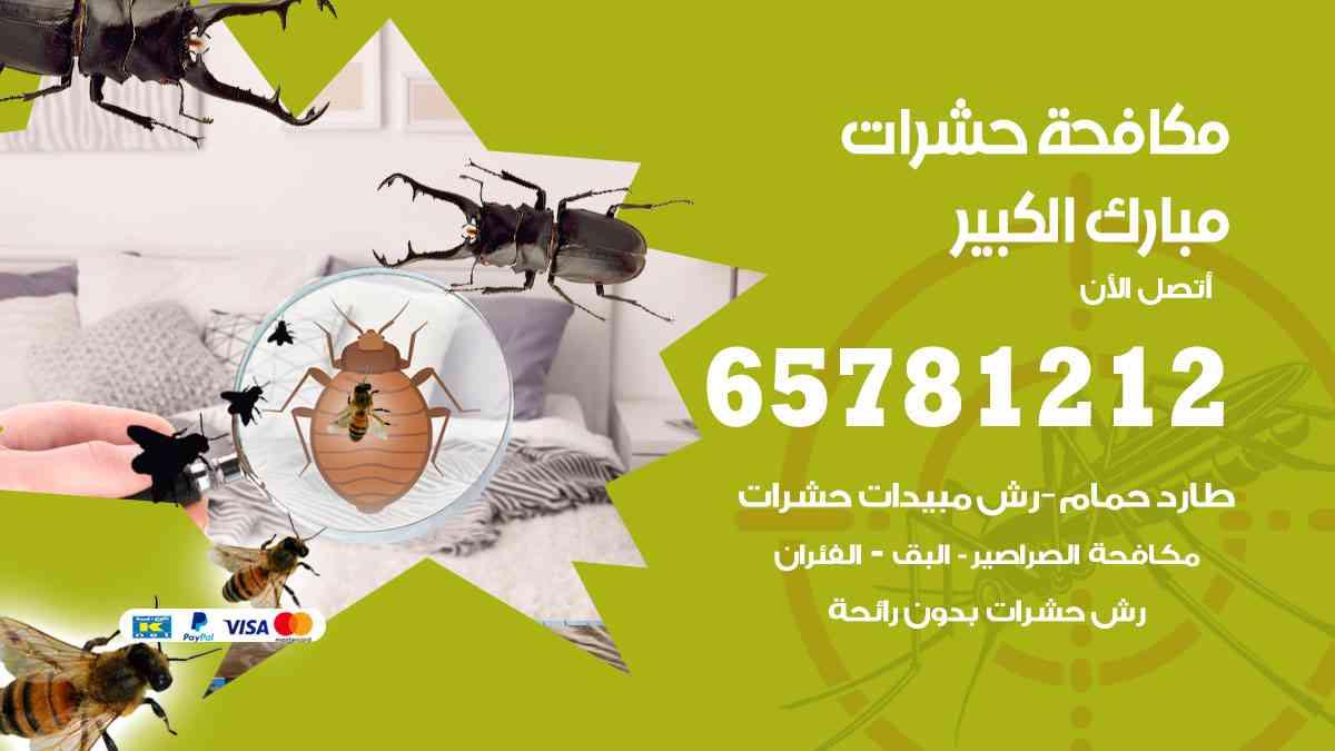 شركات مكافحة حشرات مبارك الكبير