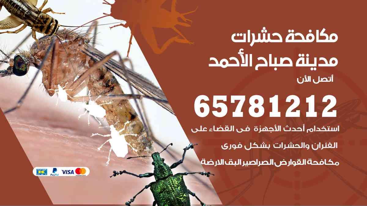 شركات مكافحة حشرات مدينة صباح الأحمد