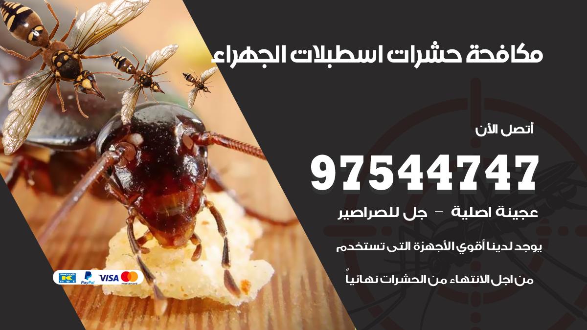 مكافحة حشرات وقوارض اسطبلات الجهراء
