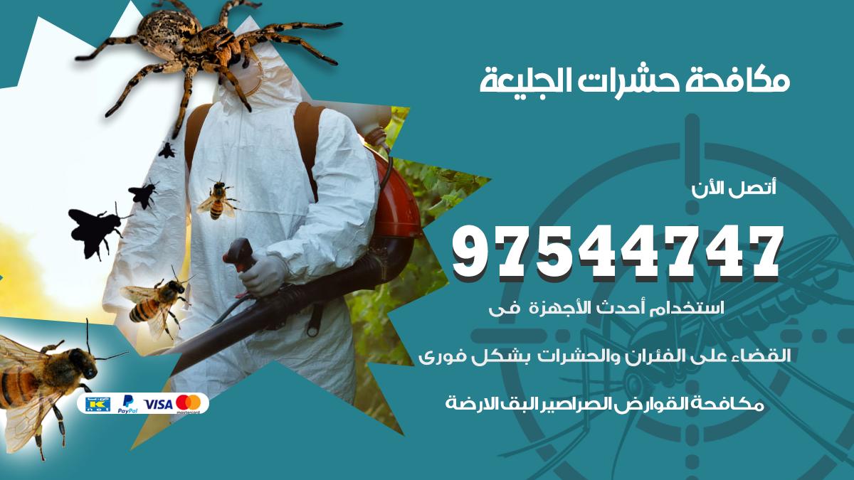مكافحة حشرات وقوارض الجليعة