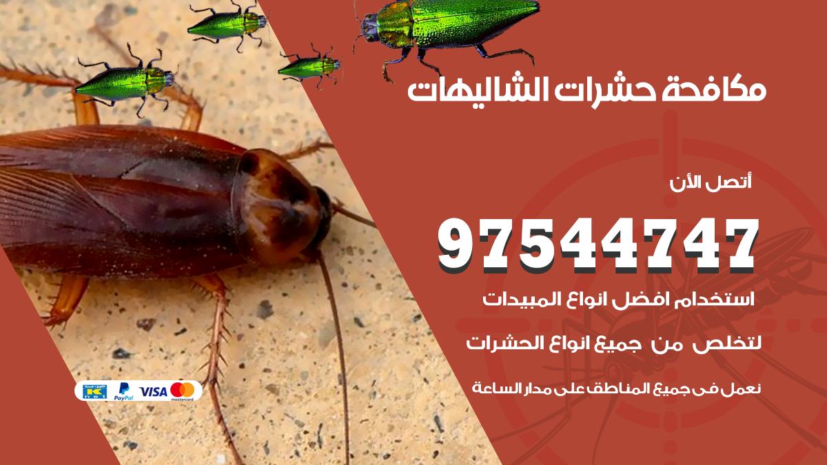 مكافحة حشرات وقوارض الشاليهات