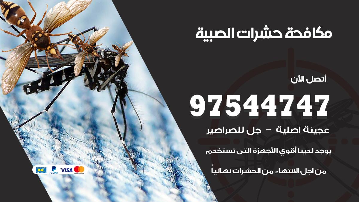 مكافحة حشرات وقوارض الصبية