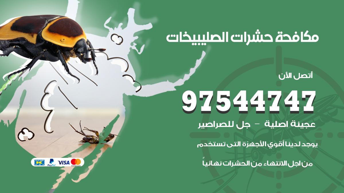 مكافحة حشرات وقوارض الصليبيخات