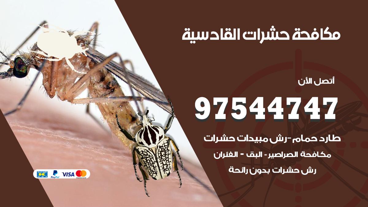 مكافحة حشرات وقوارض القادسية