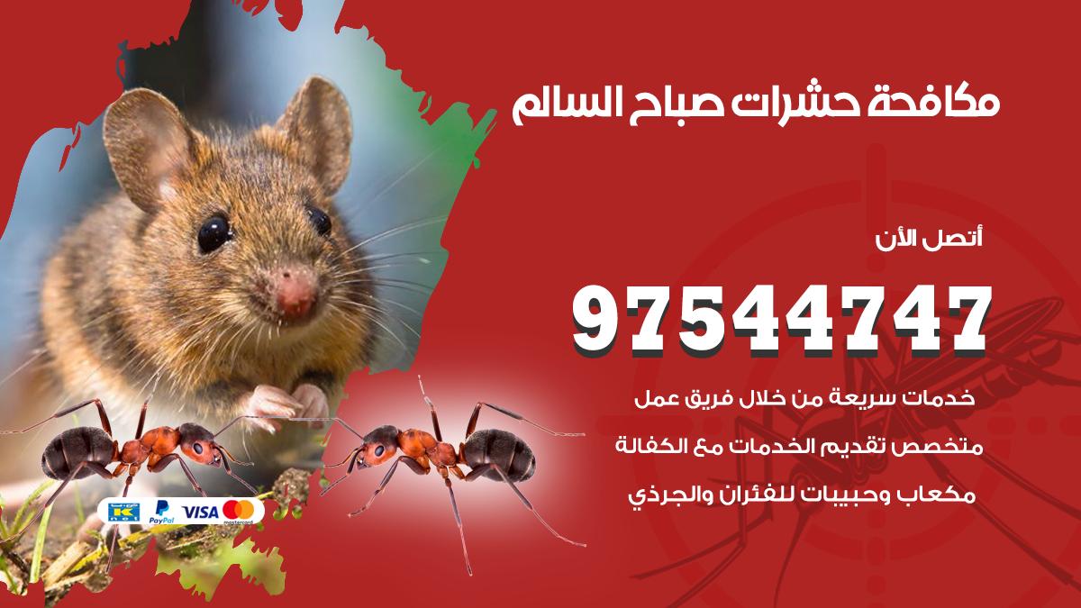 مكافحة حشرات وقوارض صباح السالم